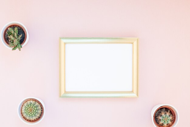 Frame mock up with decorative cactuses