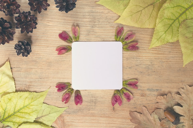 Frame of multi-colored autumn leaves with a sheet of paper