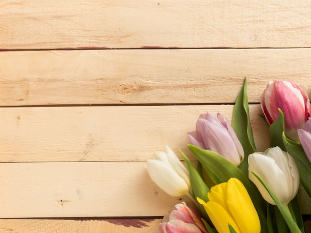 Frame of multicolored tulips on wooden background.