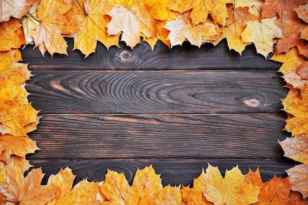 木の表面に紅葉のフレーム。秋の背景