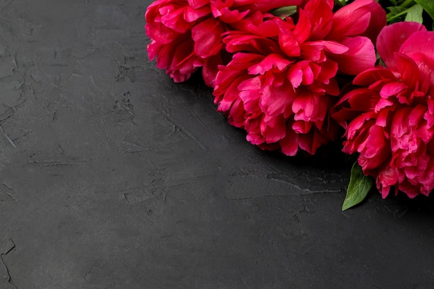Рамка из красивых ярко-розовых цветочных пионов на черном фоне графита. вид сверху. место для текста