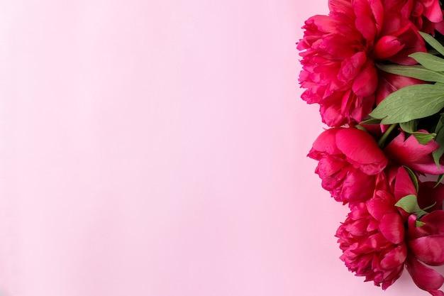 Рамка из красивых ярко-розовых цветов пионов на нежном розовом фоне. вид сверху. место для текста