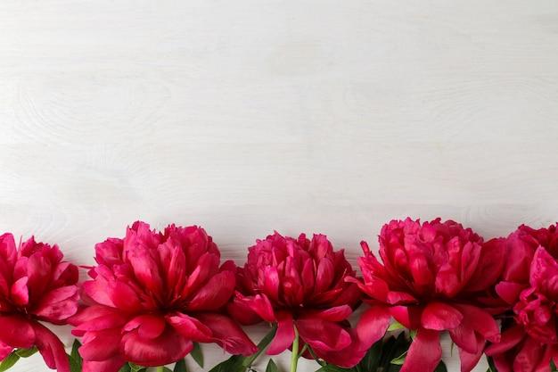 白い木製の背景に美しい明るいピンクの牡丹の花のフレーム。上面図。テキスト用のスペース