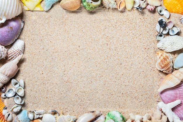 모래 배경, 위쪽 보기, 복사 공간에 있는 다채로운 바다 조개의 프레임