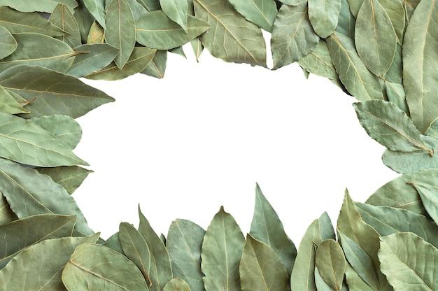 コピースペースのある白い上面図で分離された乾燥した月桂樹の葉または月桂樹のフレーム