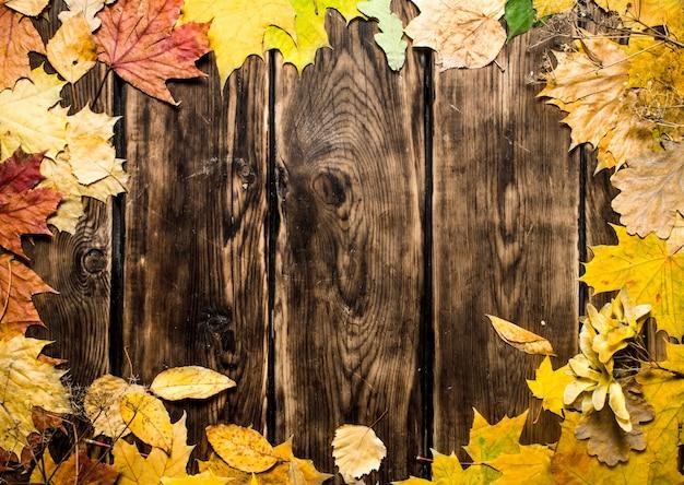 Рамка из кленовых листьев на деревянном фоне