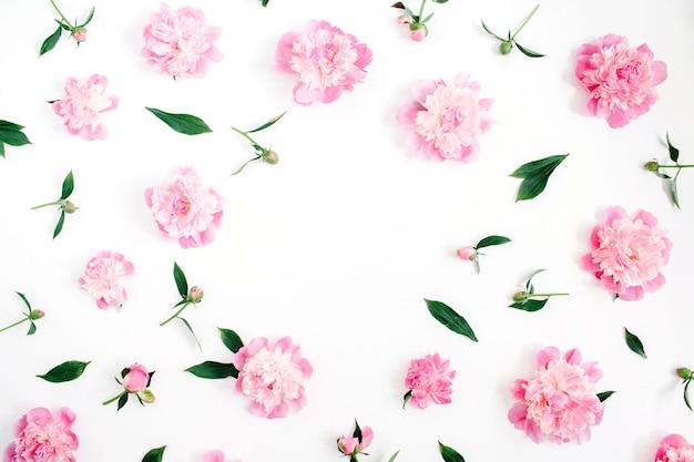 ピンクの牡丹の花、枝、葉、花びらのフレームで、白い背景にテキスト用のスペースがあります。フラットレイ、トップビュー