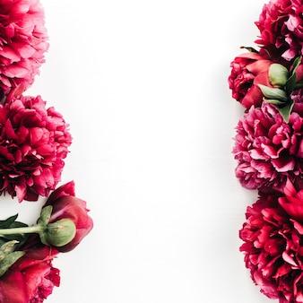 白地にピンクの牡丹の花のフレーム。フラットレイ、トップビュー