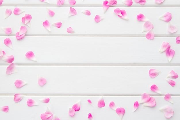 ピンクの花びらと白い木、バラのバラのフレームを置く