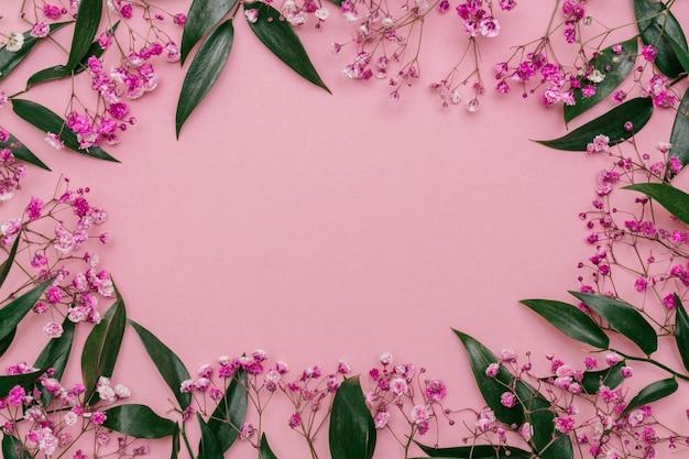 Ruscus 잎의 프레임과 분홍색 안개꽃의 가지