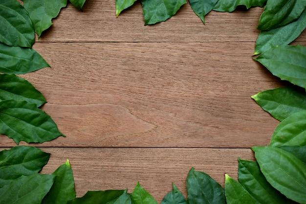 나무 배경에 열 대 녹색 잎 테두리의 프레임입니다.