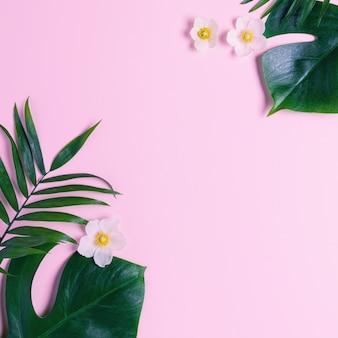 熱帯のフレームは、ピンクの背景にモンステラとヤシを残します。平面図、フラットレイアウト。