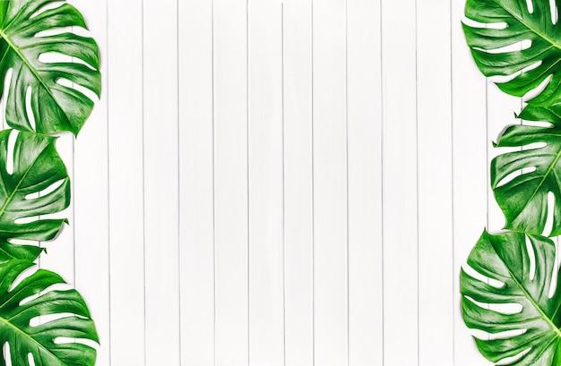 熱帯の葉のフレームは、テキスト用のスペースを持つ白い木製の背景にモンステラを残します。上面図、フラットレイ。