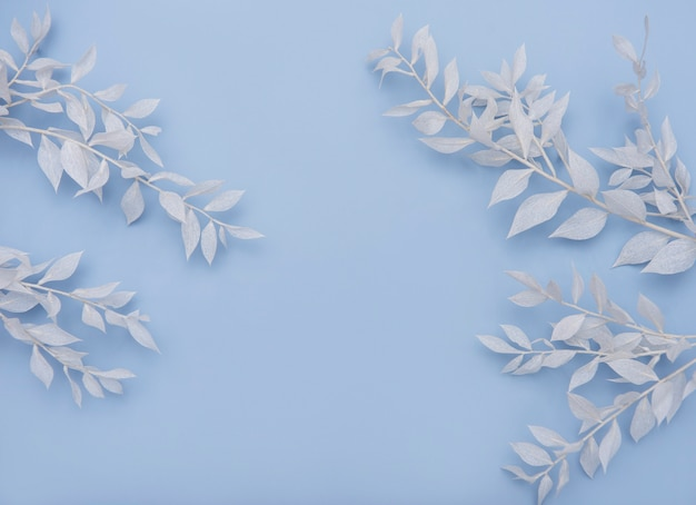 青い壁に葉を持つ白い枝のフレーム