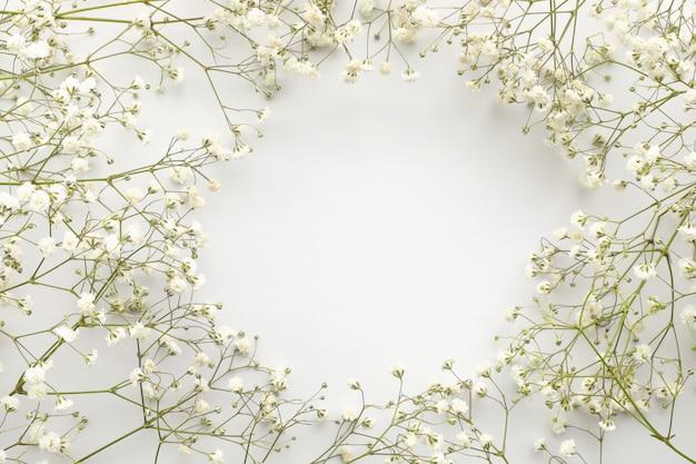 白い花、カスミソウのフレーム。フラット横たわっていた構成。白色の背景。上面図。スペースをコピーします。