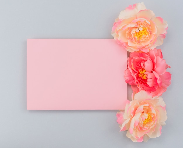 Frame paper and peonies