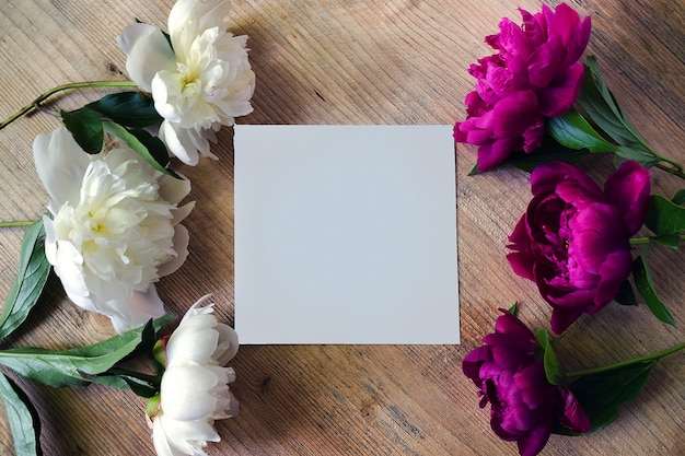 Frame of peony white and lilac colors on a wooden board with blank white greeting card. flowers texture. flat lay, top view.