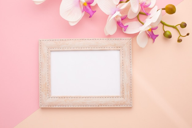 Frame on pink background with orchid with place for text. high quality photo