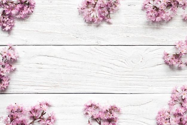 Frame of pink cherry blossom flowers on white background with copy space for greeting message