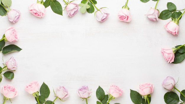 Frame of pink roses on gray background. flat lay, top view
