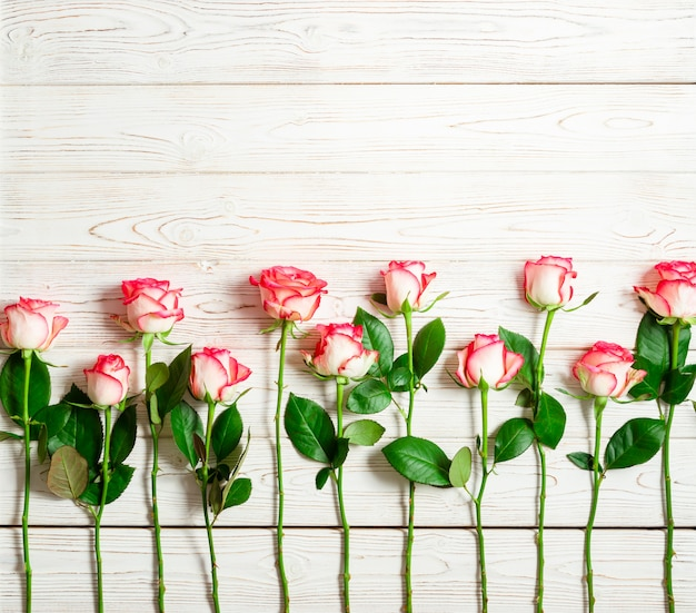 Frame of pink roses on white wooden surface