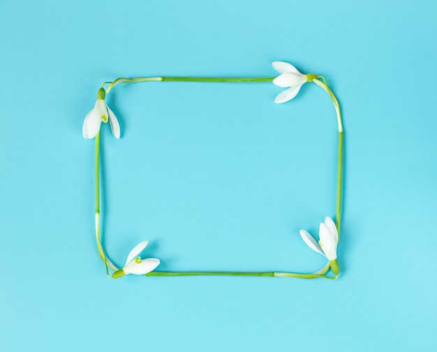 Frame on postcard of snowdrops for women's day or mother's day on blue background