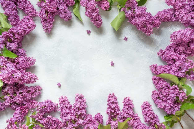 Frame of purple lilac flowers with space for text in top view