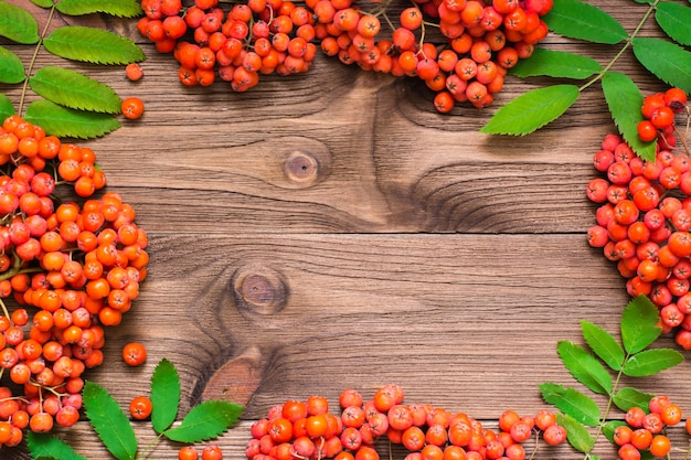 Frame of red berries and leaves of rowan on wood