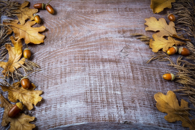 Frame of rye, acorn and fall leaves on dark wooden