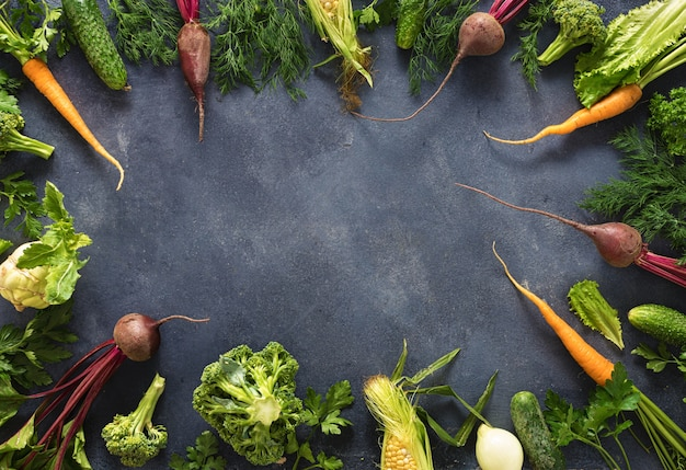 Frame of various fresh vegetables on dark