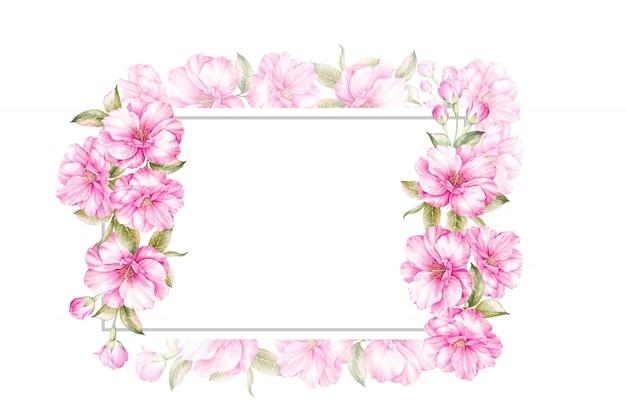 Frame of watercolor sakura