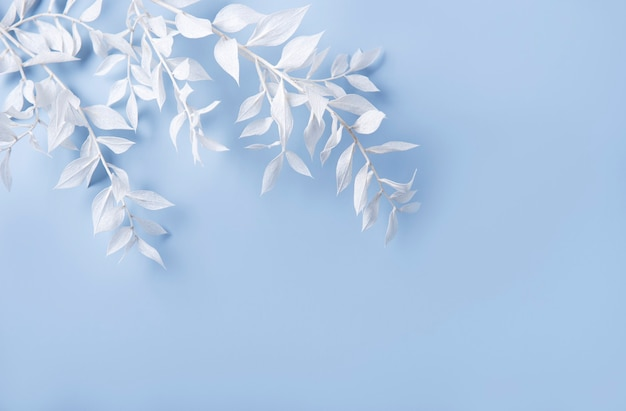 Frame of white branches with leaves on a blue background