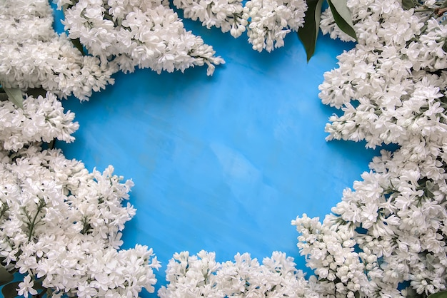Frame of white lilac on a blue background