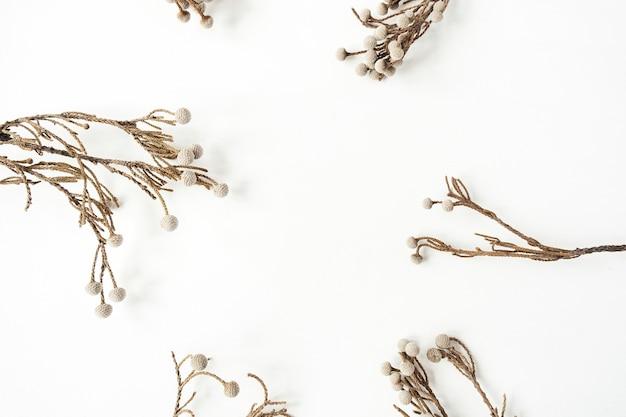白の美しい乾燥した植物の枝で作られた空白のコピースペースを持つフレーム