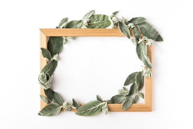 Frame with green branches and leaves