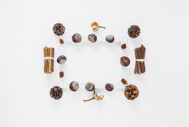 Frame with nuts and snags