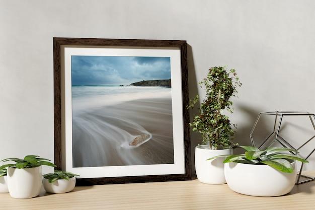 Frame with plants on shelf
