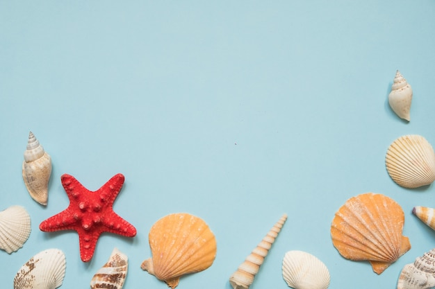 Frame with seashells, red starfish and toy boat on blue sea