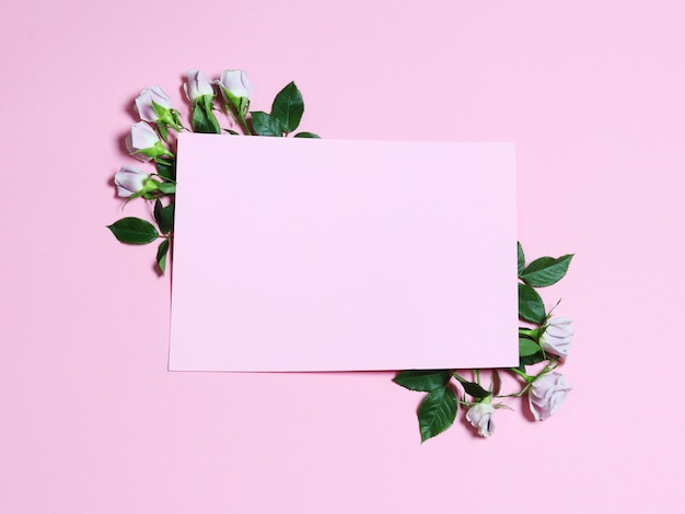 A frame with white flowers roses on the pink background