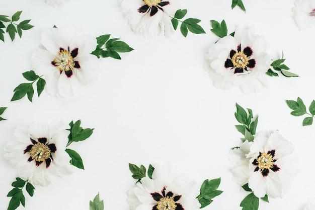 白い背景に白い牡丹の花のフレーム リース。フラットレイ、トップビュー