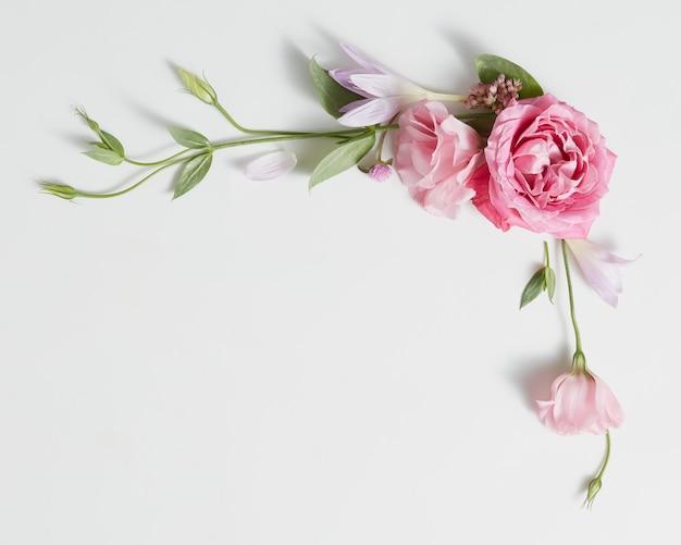 ピンクの花のつぼみ、枝、葉が白い表面に分離されたフレームリースパターン