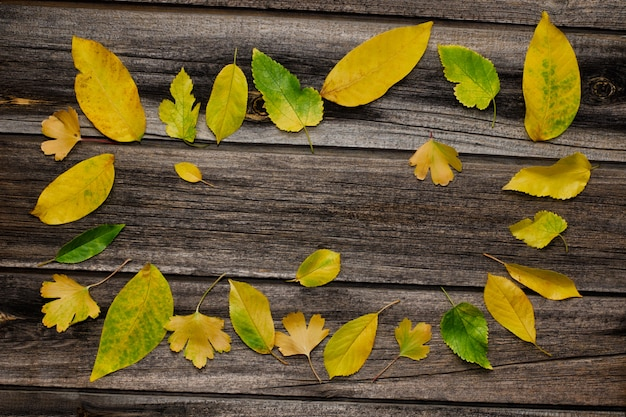 Frame of yellow leaves on wooden background