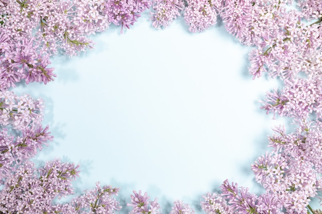 Framing by lilac flowers of light blue background with copy space.