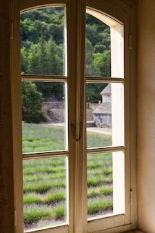 Франция, прованс, аббатство сенанк. поле лаванды в летний сезон.