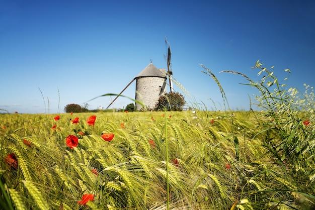 フランス、ノルマンディーのポントルソンにあるモイドリー風車