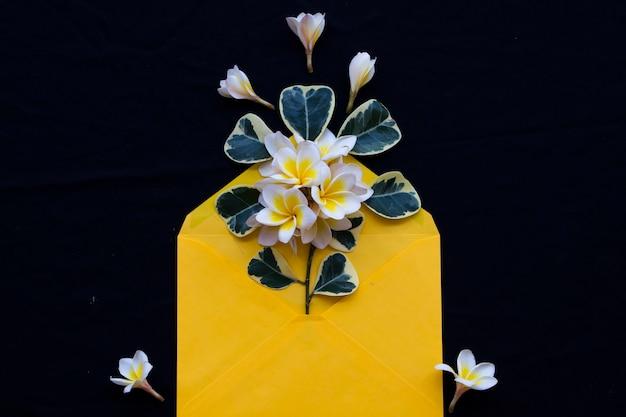 黒の封筒にフランジパニの花