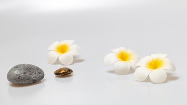 白い背景のフランジパニの花。スパの背景の概念