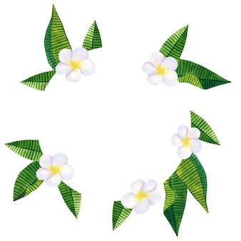 フランジパニまたはプルメリア。白い花と緑の熱帯の葉。ラウンドフレーム。手描きの水彩イラスト。孤立。
