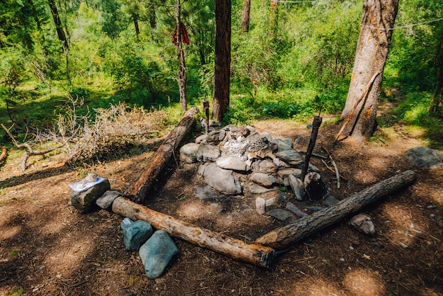 Free space for camping with bonfire with stones, woods, and benches of logs in wild forest.