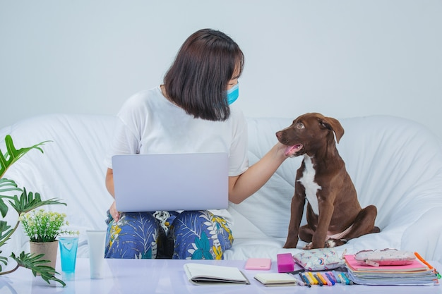 Freelance, work from home - young woman is working near a dog on a sofa at home.